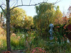 The stunning Trygve Van Tongeren Gardens outside Kafe Kabul