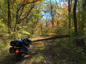10 miles of off-roading on the RT, only to encounter this 400 feet from civilization! October 2020