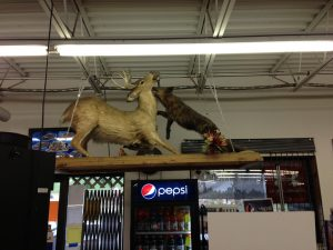 Stuck in a WV gas station deli. The scenery above the dining area…..